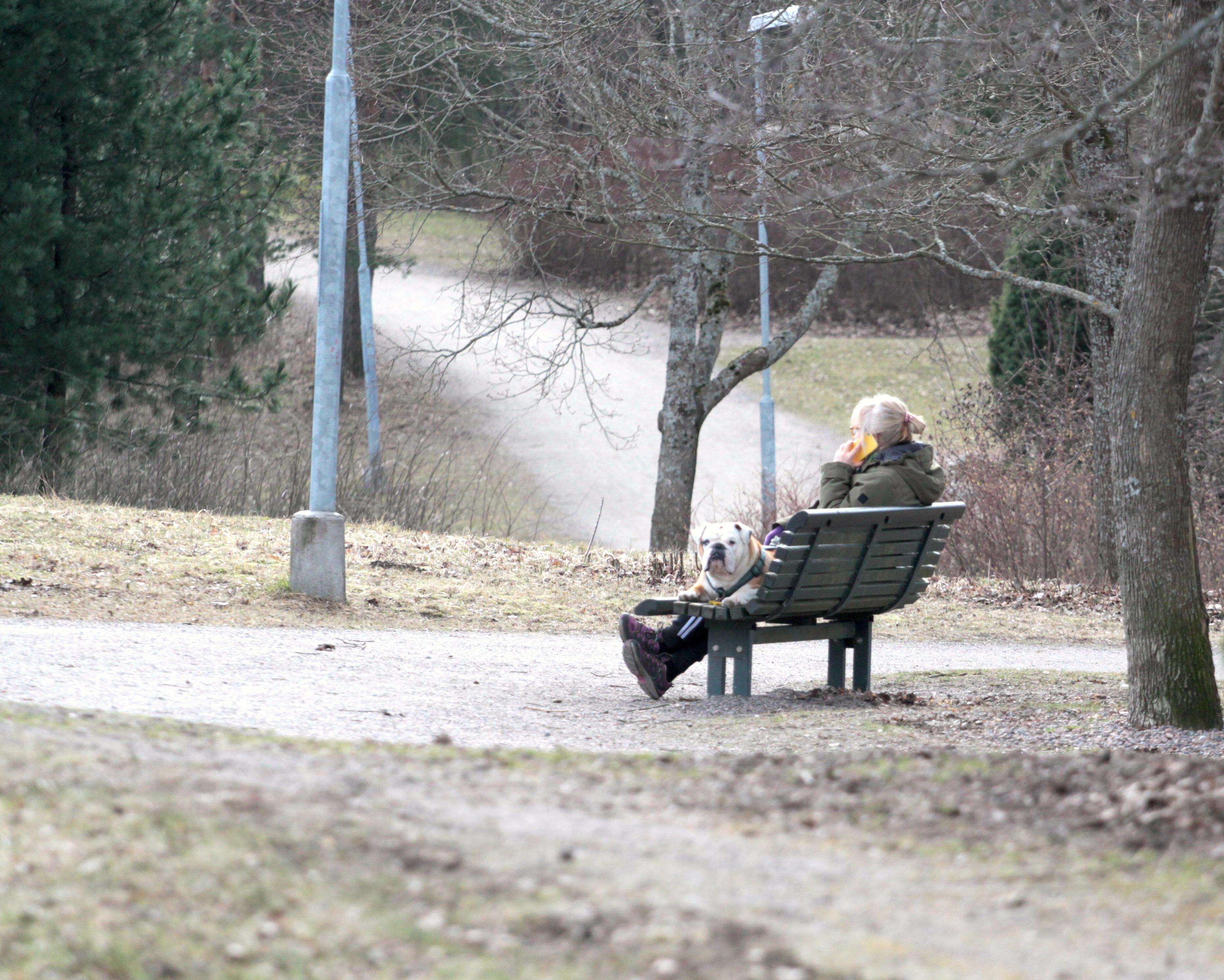 Ihminen ja koira puistossa