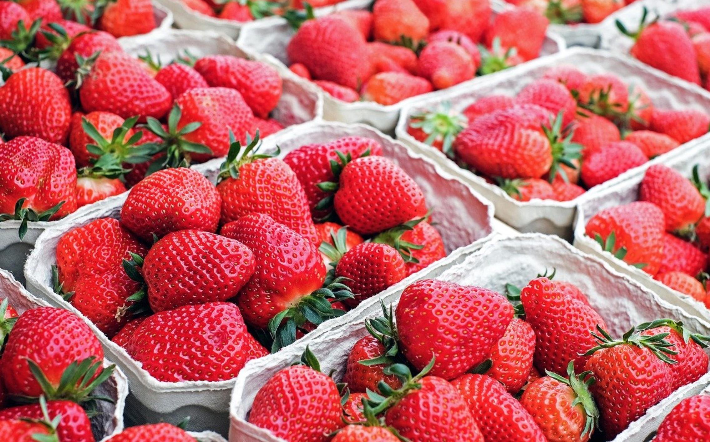 Tuoreita mansikoita rasiassa