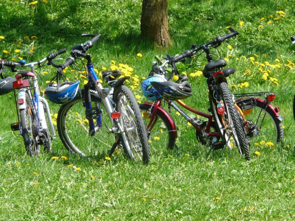 Neljä nuorten pyörää nurmikolla