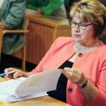 Valtimon kunnanhallituksen puheenjohtaja Anna Hölttä (kesk) oli selvityksenjatkamisen kannalla.