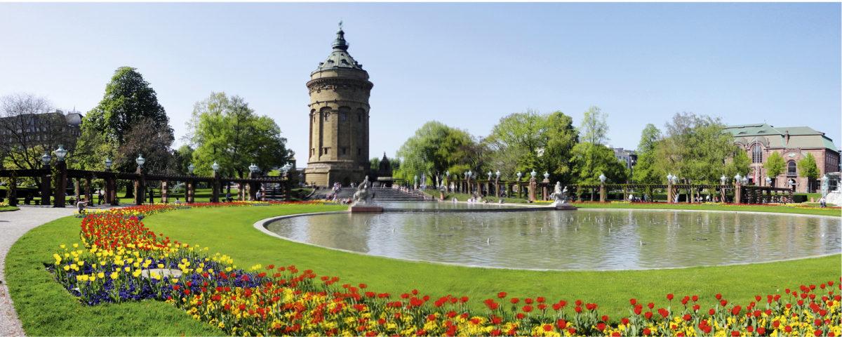 Kolmen osavaltion yli ulottuvan metropolialueen päämaja sijaitsee Baden-Württembergiin kuuluvassa Mannheimissa.